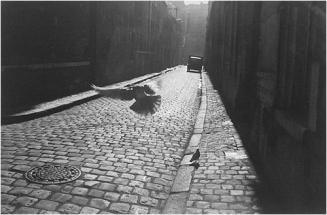 Elliot_Erwitt_Orleans_1952