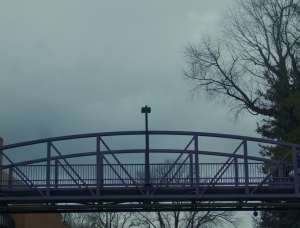 msj bridge